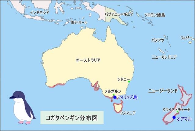 コガタペンギン分布図